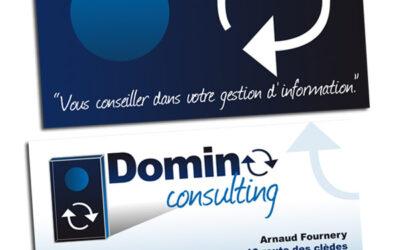 CARTE DE VISITE Domino Consulting