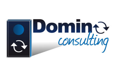 LOGO « Domino Consulting »