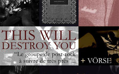 FLYER THIS WILL DESTROY YOU